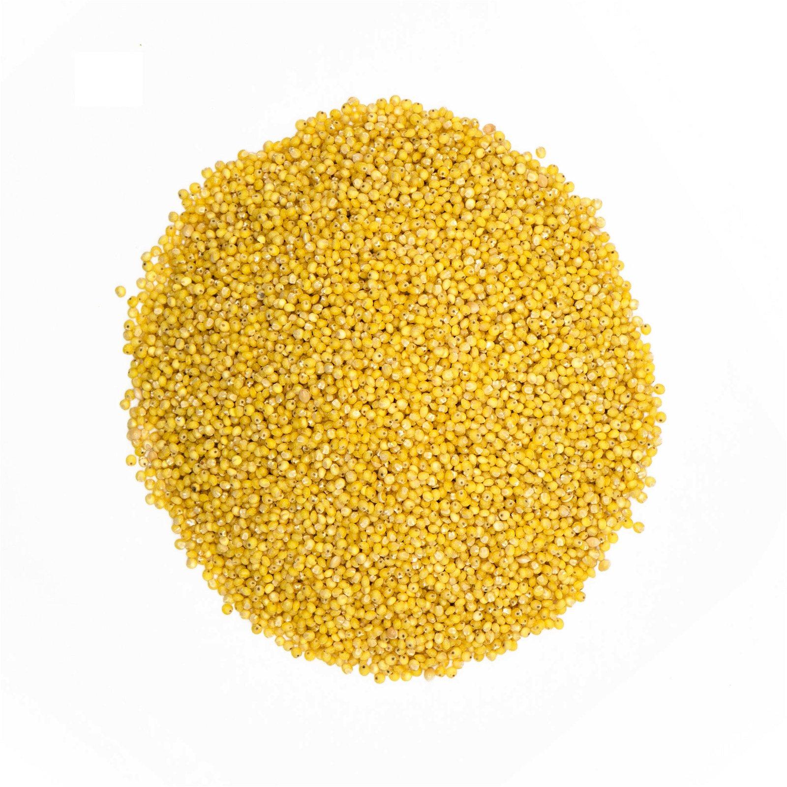 img-la-fourche-1kg-de-graines-de-millet-bio-en-vrac