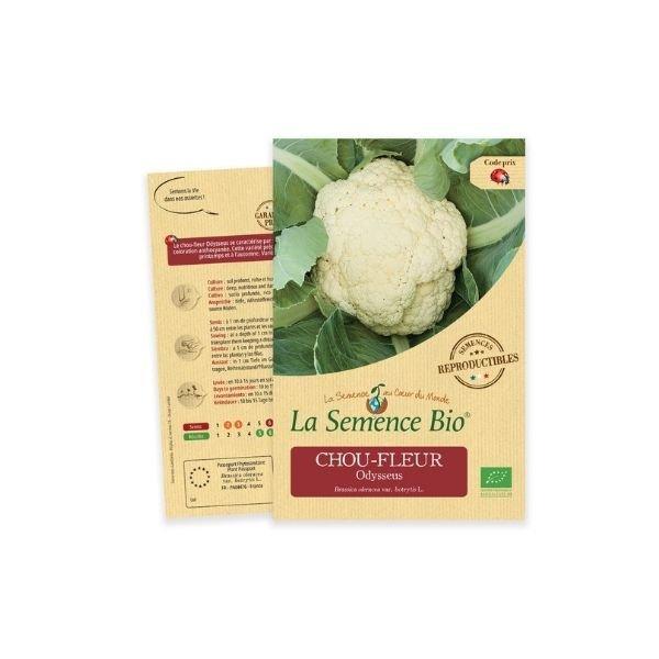 img-la-semence-bio-graines-bio-de-chou-fleur-odysseus-0-1g