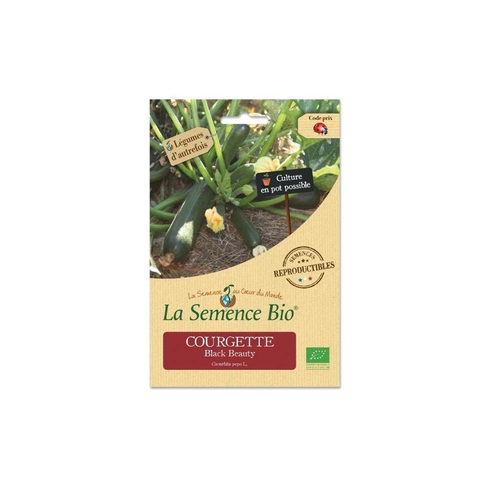 img-la-semence-bio-graines-bio-de-courgette-black-beauty-2g