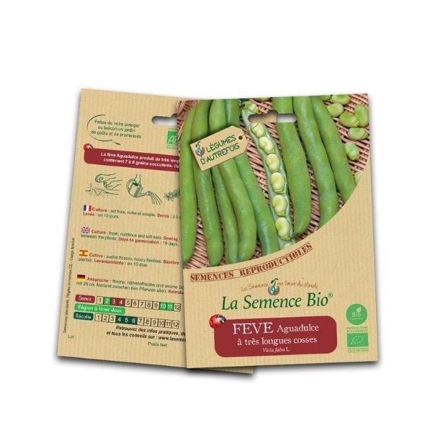 img-la-semence-bio-graines-bio-de-feve-aguadulce-a-tres-longues-cosses-50g