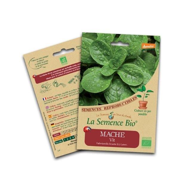 img-la-semence-bio-graines-bio-de-mache-vit-2-5g