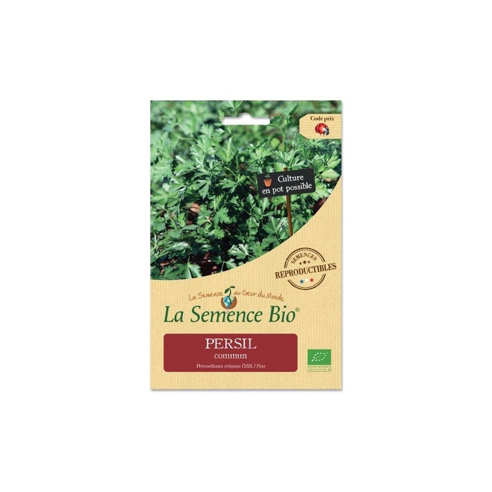 img-la-semence-bio-graines-bio-de-persil-commun-3g