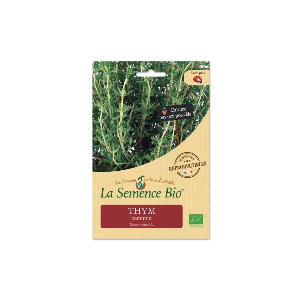 img-la-semence-bio-graines-bio-de-thym-commun-0-1g