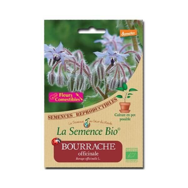 img-la-semence-bio-semence-bio-de-bourrache-variete-officinale-1-5g