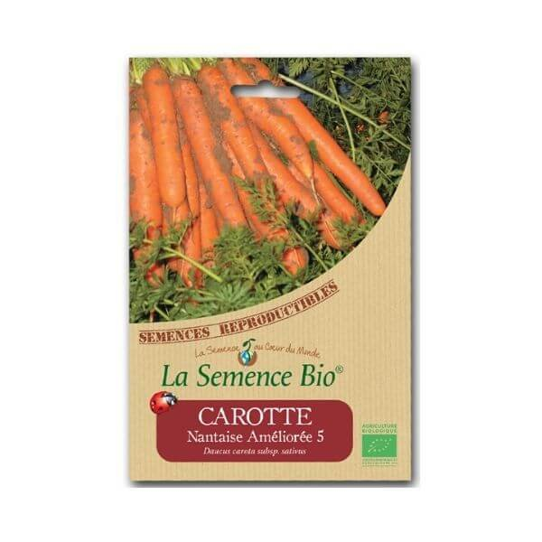 img-la-semence-bio-semence-bio-de-carotte-variete-nantaise-amelioree-5-1-2g