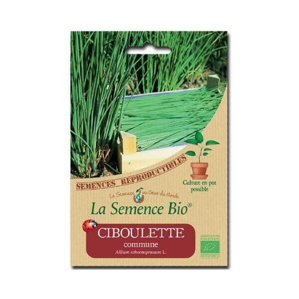 img-la-semence-bio-semence-bio-de-ciboulette-variete-commune-0-35g