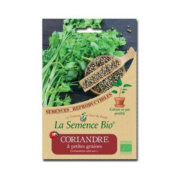 img-la-semence-bio-semence-bio-de-coriandre-variete-a-petites-graines-2g