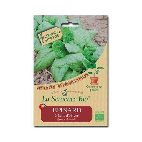 img-la-semence-bio-semence-bio-de-epinard-variete-geant-dhiver-5g