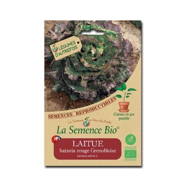 img-la-semence-bio-semence-bio-de-laitue-variete-batavia-rouge-grenobloise-0-4g