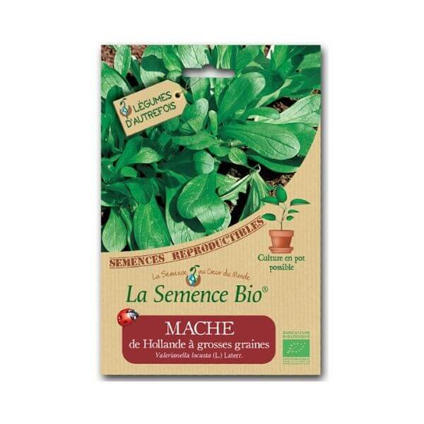 img-la-semence-bio-semence-bio-de-mache-variete-de-hollande-a-grosses-graines-1-15g