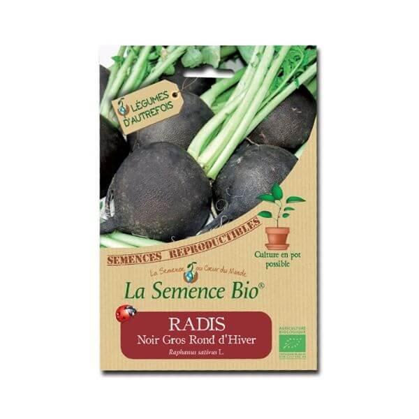 img-la-semence-bio-semence-bio-de-radis-variete-noir-gros-rond-dhiver-1g